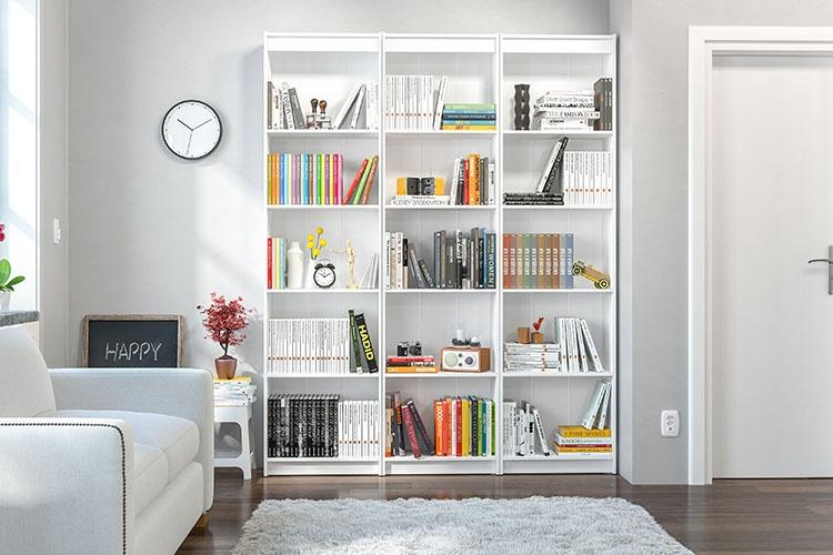 Uma biblioteca em casa - Politorno Blog