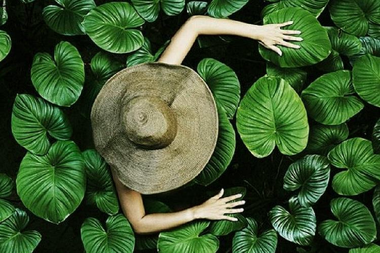 Greenery a cor de 2017 - Blog Politorno